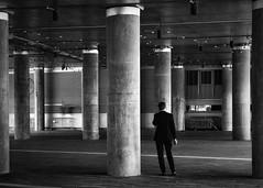 pillars of society (gro57074@bigpond.net.au) Tags: stphotographia pillarsofsociety tamron monochrome monotone mono bw blackwhite f80 d850 nikon guyclift man pillars concrete underpass sydney darlingharbour candidphotography candidstreet candid streetphotography street 2019 february