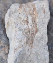 DSC_0769 (jgdav) Tags: ancient quartz pigment america image blue black ochre macro rock pictograph
