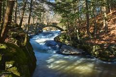 Gleason Falls 1300 (RayTheriault) Tags: water waterfront newhampshire nikon nikond810 nature nikon24120 longexposure 60 70