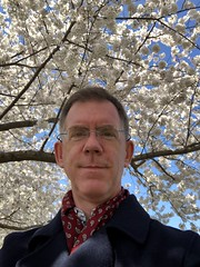 Paul poses amid cherry trees, Rose Park NW, Washington, D.C. (Paul McClure DC) Tags: washingtondc districtofcolumbia georgetown springtime cherryblossom tree flower paulmcclure apr2019