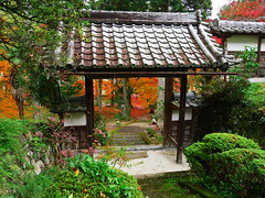 京都龍穏寺      Kyoto Ryuonji Temple
