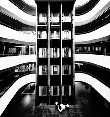 Stark Elevator (Sean Batten) Tags: sutton england unitedkingdom gb city urban blackandwhite bw lines curves nikon d800 1424 elevator lift architecture subsea7
