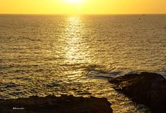 Tenerife Playa Paraiso