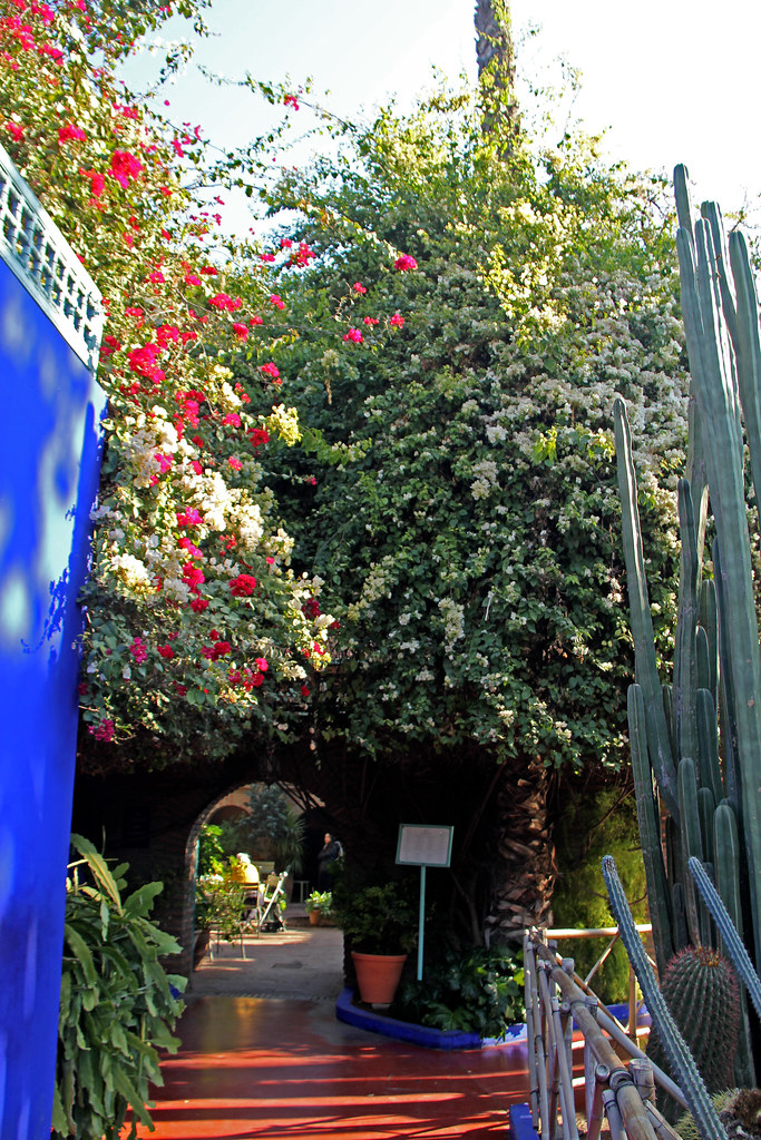 The World S Best Photos Of Majorelle And Marrakech Flickr Hive Mind