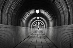 Tunnel, go ahead (reiko_robinami) Tags: street streetphotography outdoors oneperson monochrome blackandwhite tunnel yokohama japan