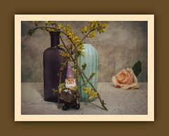 Gnome in the Garden (N.the.Kudzu) Tags: tabletop stilllife vase purple depressionglass bottle flowers forsythia rose resin figurine gnome canoneosm lensbabytrio28 lightroom photoscape texture frame