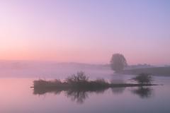 Adrift (johnkaysleftleg) Tags: hurworthburnreservoir hartlepool countydurham morning morninglight mist misty sunrise reflections peaceful serene pink canon760d sigmaaf1770mmf2845dcmacro