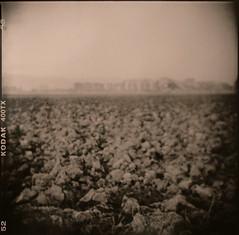 Ploughed land (Antonio's darkroom) Tags: duaflex iv kodak trix 620 pyrocathd oriental newseagull g4 lith moersch e grain blurred