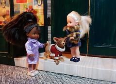 Christmas time (alenamorimo) Tags: barbie barbiedoll holidays dolls christmas barbiecollector superstar kellydoll
