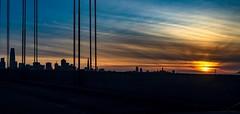 Most of the San Francisco skyline from the Bay Bridge (kate beale) Tags: sanfranciscobaybridge goldengatebridge coittower transamericapyramid transamericabuilding salesforcetower baybridge sunset sanfranciscoskyline sanfranciscoarchitecture sanfrancisco