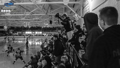 LHSAAAQ - 30 mars 2019 (hugocotnoir80) Tags: bellemare finale2019 hockey joliette lhsaaaq louiseville sportifs séries2019