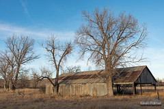 Old Monarch Barn (kevin-palmer) Tags: march spring wyoming evening nikond750 tamron2470mmf28 monarch sunny blue sky old abandoned barn trees ghosttown