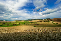 Tarsia landscape (lele_photographer_italy) Tags: panasonicg9 panasonic campagna landscape cielo blusky amazing nopeople trees tranquillità tranquility clouds nuvole lawn green blue colors colori