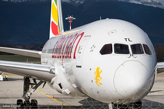 Ethiopian Airlines / Boeing 787-8 / ET-ATL (schmidli123) Tags: geneva gva gvaairport boeing boeinglovers 787 dreamliner ethiopianairlines ethiopian etatl