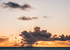 Searching Fletcher-119 (D.P. Kuras) Tags: bigsur beach landscape sunset tidepools ocean surf centralcoast family lifestyle nature sea