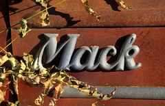 Mack Truck (arbyreed) Tags: arbyreed mascot truck macktruck macktruckbulldog vintagemascot rusty old rustytruck oldtruck metal