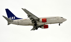 SAS LN-RPK, OSL ENGM Gardermoen (Inger Bjørndal Foss) Tags: lnrpk sas scandinavian boeing 737 osl engm gardermoen
