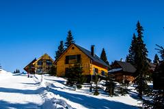 0085_DSC_2535 (marcellszmandray) Tags: kirándulás tél lucskaifátra szlovákia hó fátra