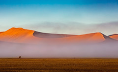 Sand in the Mist (Kevin Rheese) Tags: africa morning dunes sand sunrise desert curves namibia mist fog hills landscape namibsandsea namibnaukluftpark hardapregion na