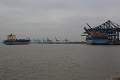 Port of Felixstowe (Mike_47714) Tags: maritime marine merchant boat ship vessel felixstowe vayenga maersk evelyn msc alicante fenja container roro cargo