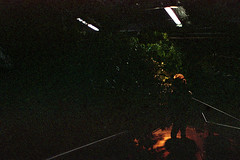 (Just A Stray Cat) Tags: konica minolta centuria 800 montreal canada quebec le plateau 35 35mm mm film analog analogue olympus stylus epic mju mjuii ii 28mm 28