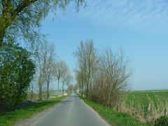 on the RheiderRoads (achatphoenix) Tags: road rheiderland rural roadtrip roadside eastfrisia enroute enpassant street strase vomautofenster inpassing