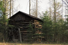 012 Tobacco barn Eden, NC (cshoemaker) Tags: barn farm abandoned decay outdoors nature trees wood old canon edennc rural