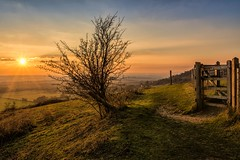 Golden hour on the North Downs (James Waghorn) Tags: haze goldenhour nikon d7100 topazclarity fence maidstone clouds tree gate winter kent sigma1750f28exdcoshsm northdowns england