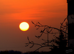 Couché de soleil sur Mérignac 33 (Michel Craipeau) Tags: étoile 2019 bordeaux canon couchédesoleil craipeaumichel eos600d eosrebelt3i fevrier2019 france gironde jardindesplantes mérignac33 nantes nouvelleaquitaine sigma18300mmf3563dcmacrooshsm soleil sudouest systèmesolaire