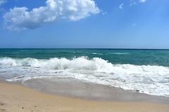 20190324_095004 (Josée Ferland) Tags: floride océan vagues