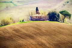 Curve (pongo 2007) Tags: house abbandoned tuscany italy pongo2007 topazstudio