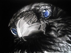 POSSESSED 9 (Sketchbook0918) Tags: crow bird avian wildlife animal possessed possession portrait illustration charcoal colorpencil drawing paper art selectivecoloring eyes dark