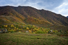 Bazum mountains (Tiigra) Tags: haghpat loriprovince armenia am 2011 church color forest landscape mountain nature plant rock tree village