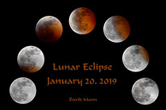 Lunar Eclipse 19012001 (mannmadephotos) Tags: abstract astrology astronomy background black blood celestial cosmos crescent cycle dark earth earthlight earthshine eclipse full heavenly isolated luna lunar moon phase moonlight moonshine mysterious nature night orange orbit orbiting planet rare red satellite science shadow space sphere sun super telescope tide tidal total universe wolf