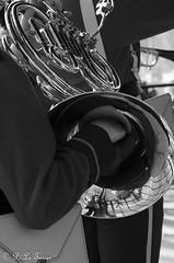 - Série Musiciens- Danehofgarden de NYBORG-8262 (letexierpatrick) Tags: musicien musique noir blanc noirblanc noiretblanc black white bw blackandwhite monochrome nikond7000 nikon extérieur explore europe france