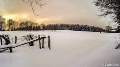 Snow world (Lцdо\/іс) Tags: waimes ardennen ardennes ardenne snow neige winter hiver white blanche belgique belgium belgie europe europa eifel l lцdоіс 2019 janvier january