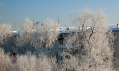 hd_20190203135018 (anatoly_l) Tags: russia siberia kemerovo city winter february 2019 snow frost cold
