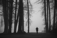 enter the unknown (bluechameleon) Tags: barnetmarinepark sharonwish alone blackandwhite bluechameleonphotography burnaby fog landscape loneliness lonely man mysteriious nature silhouette trees winter mist forest park sky