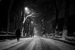 Cold Walk (Picocoon图茧) Tags: snow night street lamp blackandwhite bw chinese china anhui hefei campus walk person