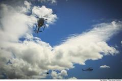 Helicópteros H-50 Esquilo (Força Aérea Brasileira - Página Oficial) Tags: 1gav11 2018 brazilianairforce fab h50esquilo natal voo asasrotativas ceu ceuazul emvoo esquadraogaviao forcaaereabrasileira formacao fotobrunobatista helicopteros treinamento