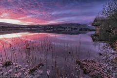 tranquility (stephencooper07) Tags: ilovethelakes boathouse fujiuk sunrise water lake reeds
