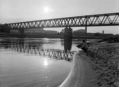 The river runs through it (gsantar) Tags: film photography mamiya 1000s 645 sekor 80mm f19 rollei rpx 400 dev 730 ro9 goran šantar the river runs through it