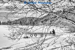 Le Sentier, Lac de Joux (Stefano Procenzano) Tags: lechenit vd svizzera ch lesentier lacdejoux cantonvaud lac lago lake zeissmilvus50mmf14distagon zeiss milvus1450 zf2 milvus 50mm f14 50mmf14 manualfocuslens mflenses blackandwhite noiretblanc biancoenero nb bw monochrome blackwhitephotos silverefexpro2 bwartaward nikon d600 nikond600