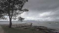 www.vagalumes.es (Jano Sanmartín) Tags: 2019 arousa atlantico invierno playa riadearousa riasbaixas terron vagalumes vilanova wwwvagalumeses