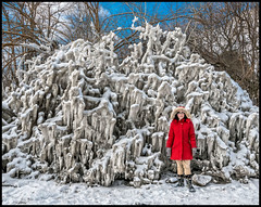 In The Petrified Forest (Rodrick Dale) Tags: in the petrified forest ice snow winter cold red coat
