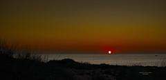 A ras del horizonte (Fotgrafo-robby25) Tags: alicante amanecer costablanca marmediterráneo sol sonyilce7rm3 árbolesyarbustos