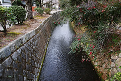 SDQ_1246 (koyaman3422) Tags: 京都 kyoto sigma sdquattro 1770mm 哲学の道