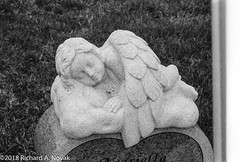 Sleeping angel (OldChE) Tags: 35mm 3600dpi adobelightroom autofocus bw cemetery developedathome dilutiona ei3200 film hc110dilutiona ilfordhp5 kodakhc110 mistakes pentaxzxl photographydarkroom plustekopticfilm8200i push smcpentaxfa2890mmf3556 scans vuescan wheatlandtownshipcemetery angel grave