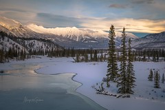 Frozen River (Margarita Genkova) Tags: trees leadinglines landscape nature sky clouds frozen river winter banffnationalpark