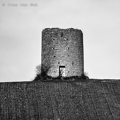Touget, Gers (Ivan van Nek) Tags: gascogne gascony 32 gers france frankrijk frankreich midipyrénées occitanie windmill moulindarrout ruïne remains windmolen moulinàvent nikon nikond7200 d7200 tamron70300mm decay abandoned blackandwhite zwartwit schwarzweis noiretblanc nb bw monochrome monochroom landscape landschap square vierkant inthemiddle